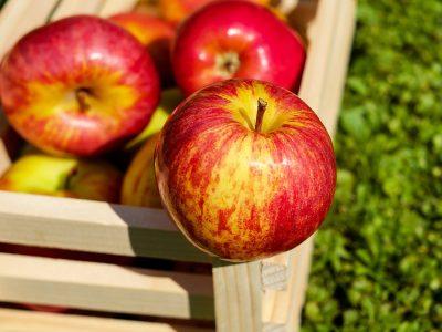 apple-1589874_1280