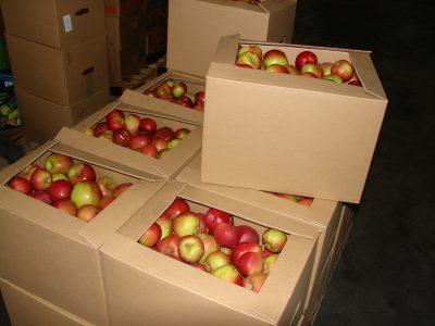 āboli kastēs